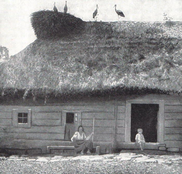 Eastern-Slovak-peasants-with-lucky-storks