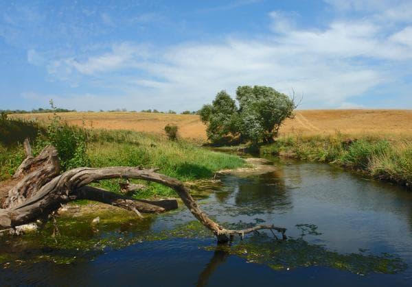 Річка Калка